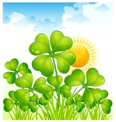 Landscape with four leaf clovers vector