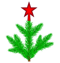 Conifer tree with star vector image vector image
