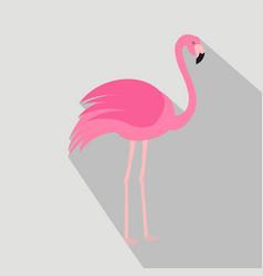 Flamingo cartoon flat icon brazil vector