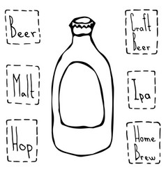 Classic beer bottle hand drawn vector