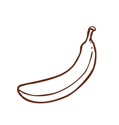 Hand drawn banana vector