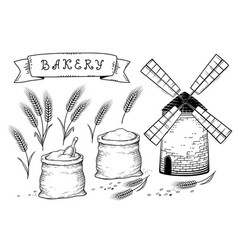 bakery set with wheat ears vector image vector image