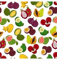 Exotic fruits seamless pattern background vector