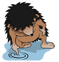 Hedgehog and water puddle vector