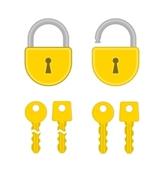 Keys and lock icon vector image