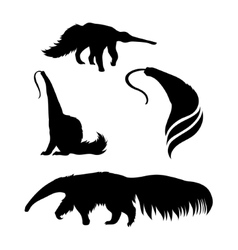 Silhouettes of a ant-eater vector