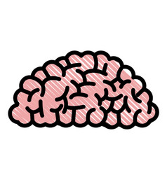 Drawing brain human organ memory vector