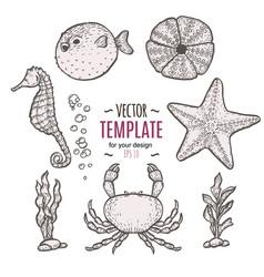 hand drawn sea life  sketch template vector image