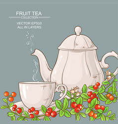 cup of cranberry tea and teapot vector image
