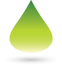 Green drop resize vector image