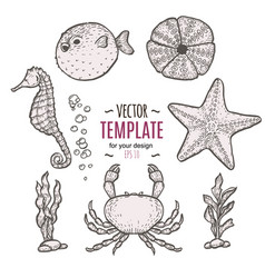 Hand drawn sea life sketch template vector