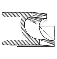 Scotia a roman moulding vintage engraving vector