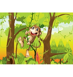 Monkey in the forest vector image