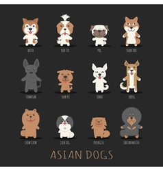 Set of asian dogs  eps10 format vector
