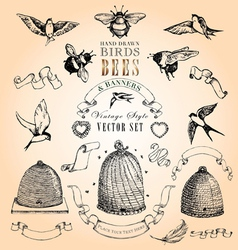 Birds Bees and Banners Set vector image