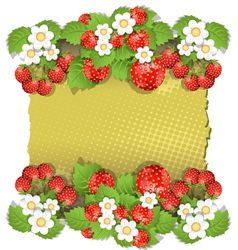 background with strawberry vector image vector image