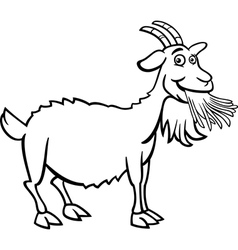 farm goat cartoon for coloring book vector image vector image