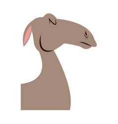 Head camel animal manger christmas vector