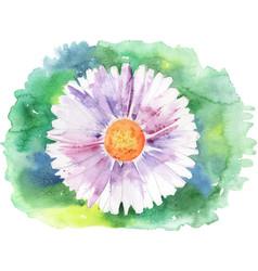 Painted daisy vector