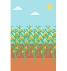 Background of corn field vector
