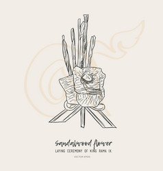 Sandalwood flower for king sketch vector