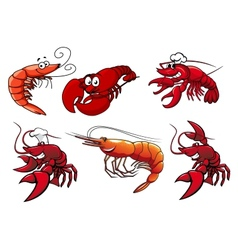 Seafood characters of shrimp prawns and lobsters vector image vector image