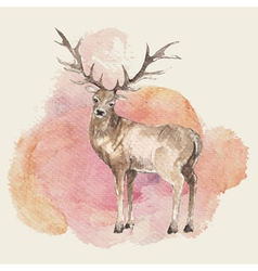 Hand drawn deer with watercolor background vector
