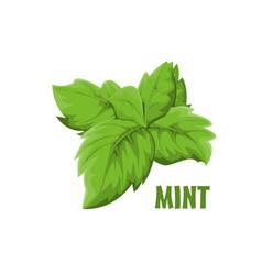 Logo mint farm design vector