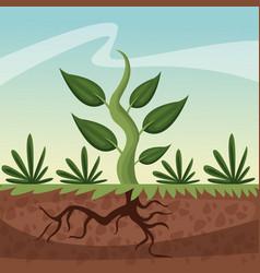 Realistic color poster closeup growing plant vector