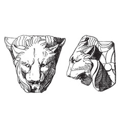 Chimaera head is shown from its front and side vector