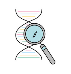 Dna molecule with magnifying glass vector