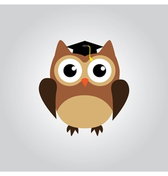 Owl grad vector