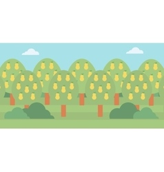 Background of pear trees vector
