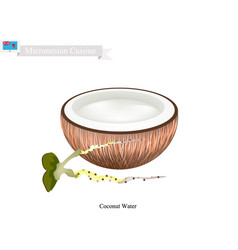 coconut water drink a famous beverage in micrones vector image vector image
