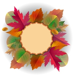 Lace frame with autumn leaves vector