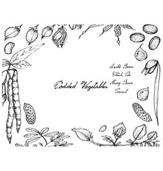 Hand drawn of podded vegetables frame vector
