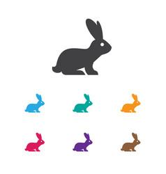 Of zoo symbol on bunny icon vector