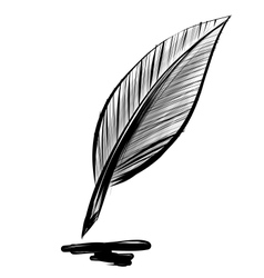 Quick sketch feather vector image