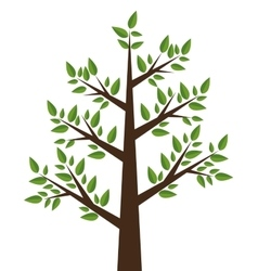 Tree plant design vector