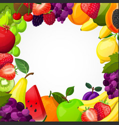 fruits frame template vector image