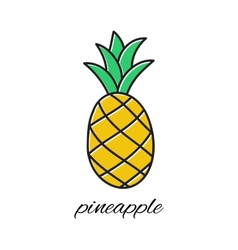 Hand drawn pineapple in doodle style vector