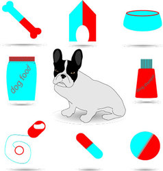 Color set of care and vet dog vector