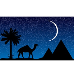 night in egypt vector image vector image