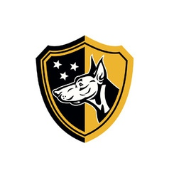 Doberman guard dog stars shield vector