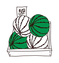 A truft of watermelons vector image vector image