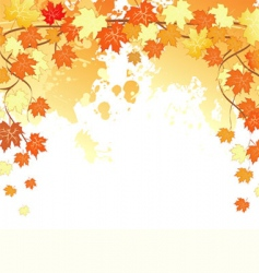 autumn back splash vector image vector image