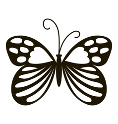 Beautiful butterfly icon simple style vector