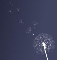 Dandelion black and white vector