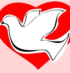 Dove of love vector image