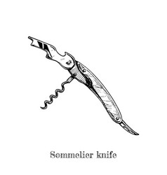 Sommelier knife vector